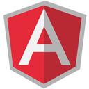 angular js website development