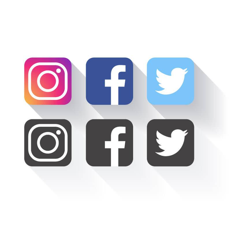 social media integration in wordpress